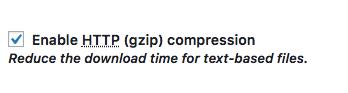 Enable Gzip